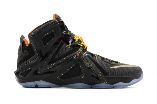 Lebron 12 'Watch The Throne' NikeiD - Multi