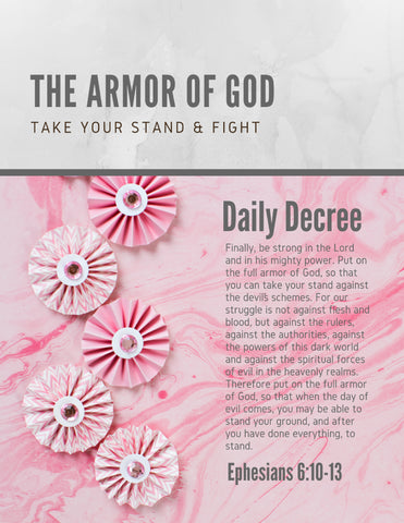 "Wall Art Armor of God Declarations (Printable 7 page 8x10"") Pink Marble"