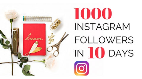 How to get 1000 Instagram Followers in 10 Days (Video Course)