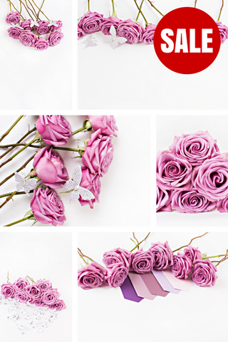 Stock Photo BUNDLE (Set of 10) Purple Roses