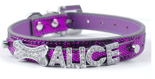 Accessories - Personalized Rhinestone Charm Collar