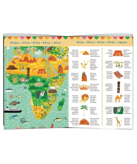 Observation Puzzle - Around the World