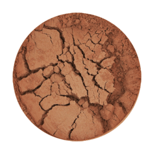 Hot Cacao #9 Mineral Blush/Lip