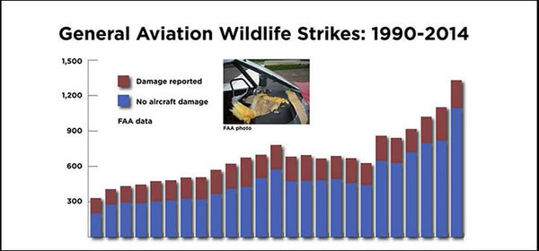 BIRDS A BILLION-DOLLAR HAZARD - WILDLIFE RISK RISING by Jim Moore