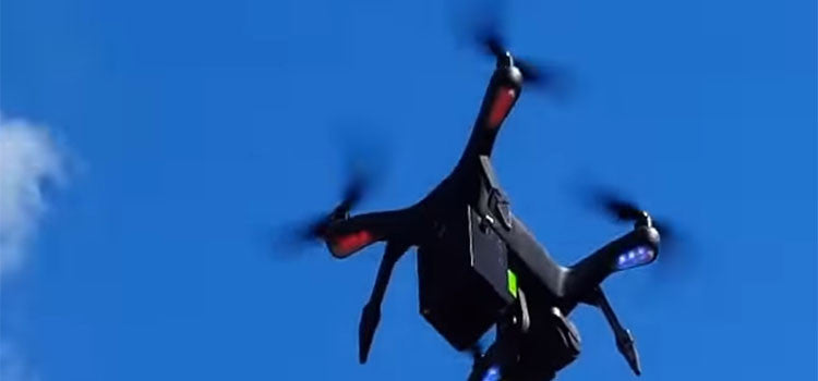 Using Drones for Agricultural Bird Control – An Additional Level of Pressure