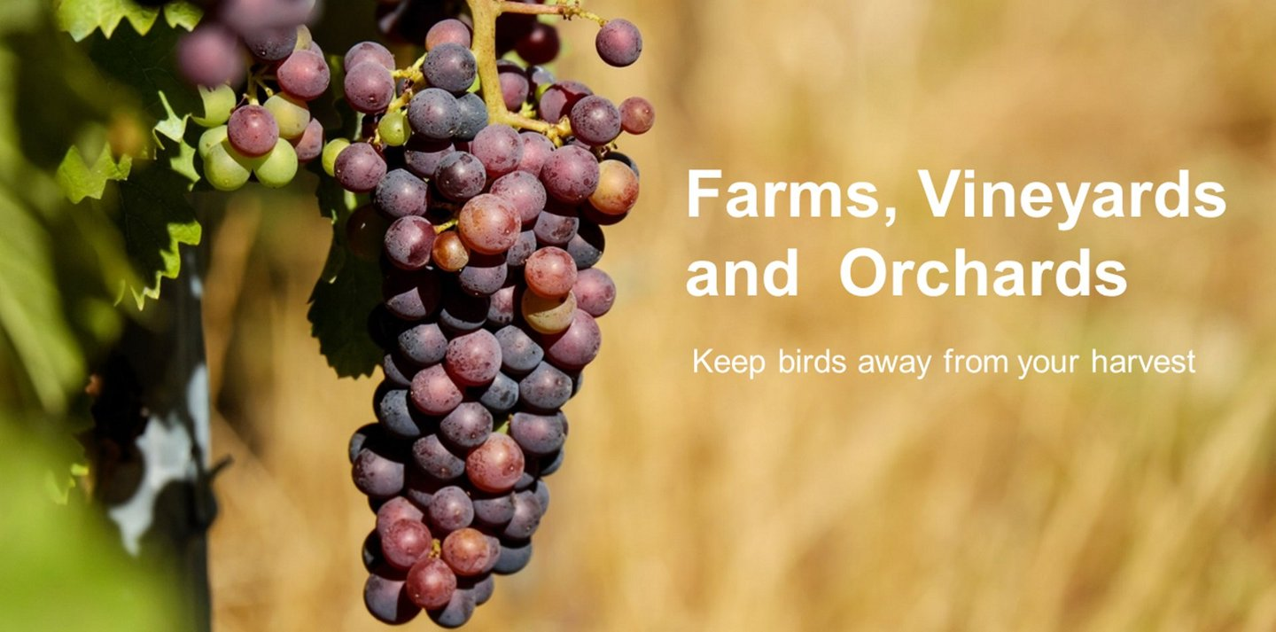 Bird Control Products for Agricultural - Pest Control from