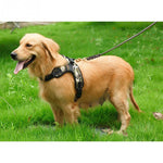 Pet Dog Vest Collar Harness For Big Dog Adjustable Harness  ON SALE TODAY - GET IT NOW