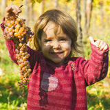 LILIA Albana Passito is harvested by little LILIA