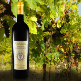 VICTORES Sangiovese Superiore 2015 organic vineyards