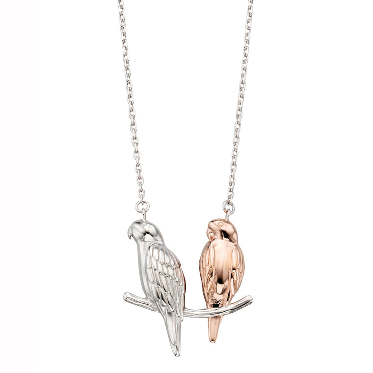 Silver Parakeet Necklace
