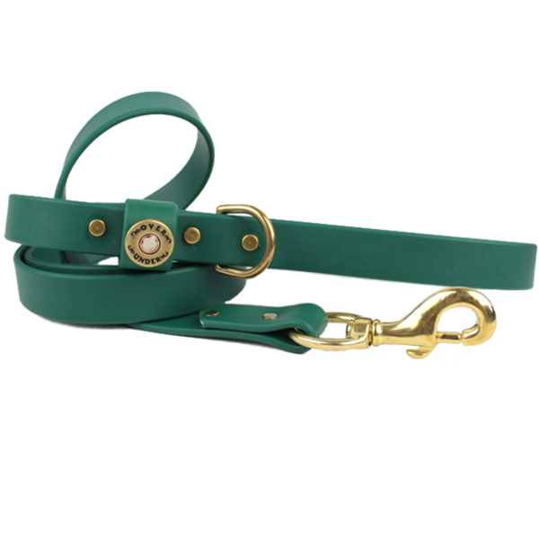 Water Dog Leash Alpine Green