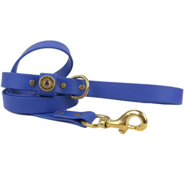 Water Dog Leash Cobalt Blue