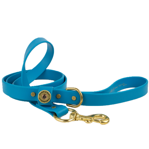 Water Dog Leash Aqua Blue