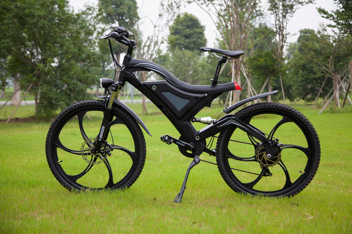 Electric Bicycle Ebike SMTEV Smart EV Mobility