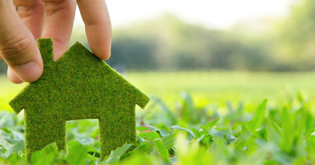 Six Simple Tips for Homeowners to Go Green