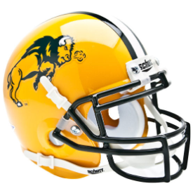 North Dakota State Bison Schutt Mini Football Helmet Desk Caddy