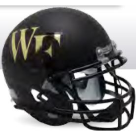 Wake Forest Demon Deacons Matte Black Schutt XP Authentic Full Size Football Helmet