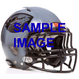 Oregon State Beavers Grey Schutt XP Replica Full Size Football Helmet