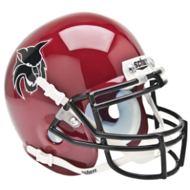 Central Washington Wildcats Schutt XP Authentic Mini Football Helmet