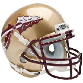 Florida State Seminoles Schutt XP Authentic Mini Football Helmet