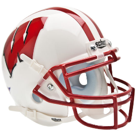 Wisconsin Badgers Schutt XP Authentic Mini Football Helmet
