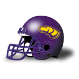 Wisconsin-Stevens Point Pointers Schutt XP Authentic Mini Football Helmet