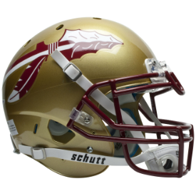 Florida State Seminoles Schutt XP Authentic Full Size Football Helmet