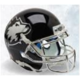 Northern Illinois Huskies Chrome Mask Schutt XP Authentic Full Size Football Helmet