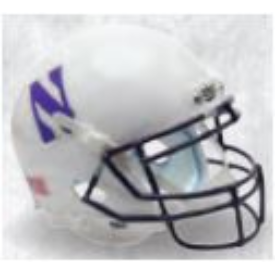 Northwestern Wildcats White Schutt XP Authentic Full Size Football Helmet
