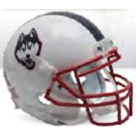 Connecticut Huskies White Husky Schutt XP Authentic Full Size Football Helmet