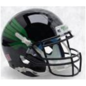North Texas Mean Black Green Eagle Schutt XP Authentic Full Size Football Helmet