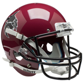 Central Washington Wildcats Schutt XP Replica Full Size Football Helmet