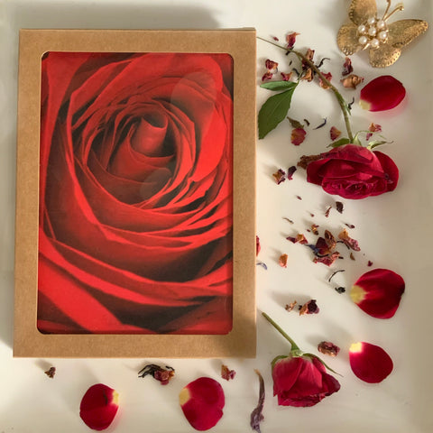 Petal Rose Notecard Box GiftSet