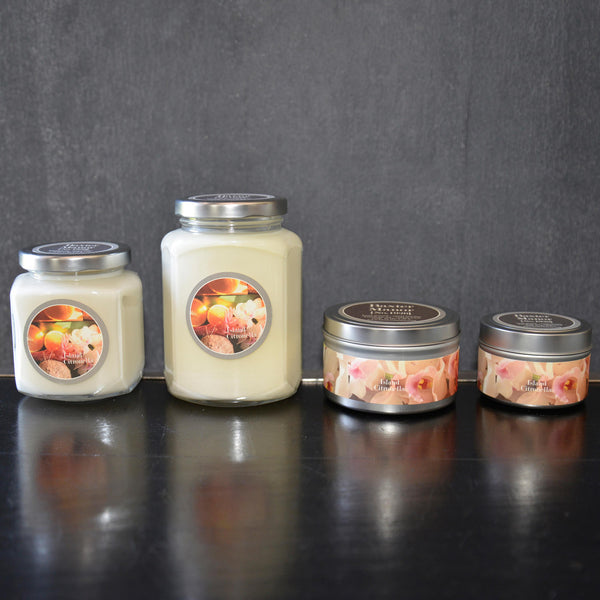 Island Citronella Scented Baxter Manor Candles