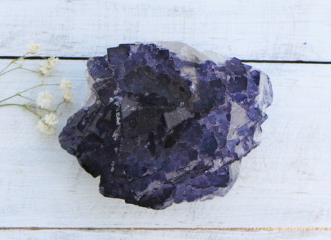 Fluorite - Purple on White, Cubic from Mexico, A Grade
