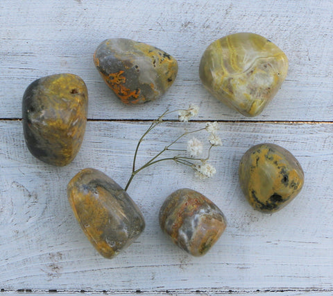 Bumble Bee Jasper- Tumbled - Sale - B Grade