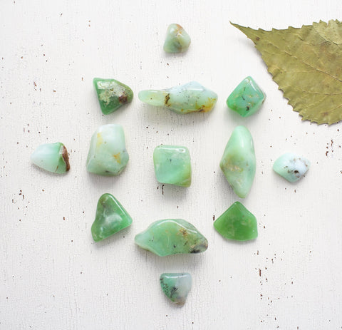Chrysoprase - Tumbled