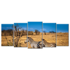 African Steppe Zebra 5 Panels XL Wall Art - mommyfanatic