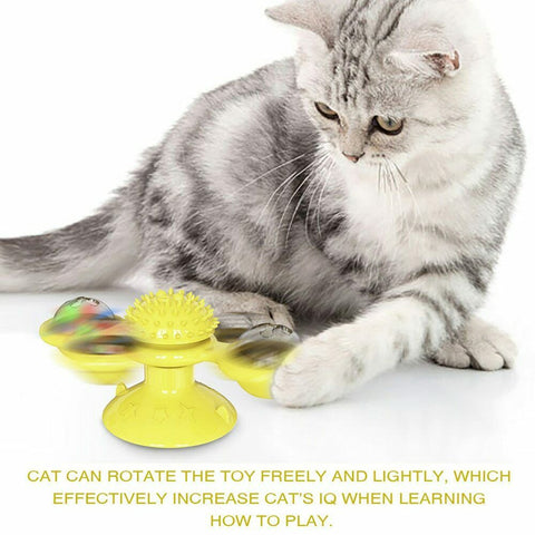 Image of Windmill Cat kitten Toy LED light up motion ball interactive spinner - mommyfanatic