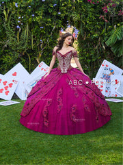 2 Piece Floral Quinceanera Dress by Ragazza D50-550