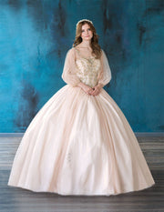 Beaded Long Sleeve Quinceanera Dress by Calla KY71289X