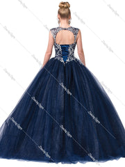 Blue Glitter Ball Gown with Floral Embroidery by Dancing Queen 1355-Quinceanera Dresses-ABC Fashion