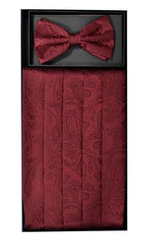 Burgundy Paisley Cummerbund and Bow Tie Set-Men's Cummerbund-ABC Fashion