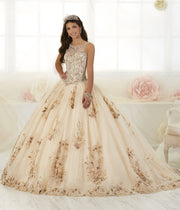 Floral Appliqued Quinceanera Dress by House of Wu 26884-Quinceanera Dresses-ABC Fashion