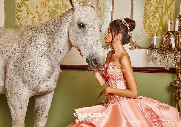 Floral Embroidered Quinceanera Dress by Ragazza Fashion B86-386-Quinceanera Dresses-ABC Fashion