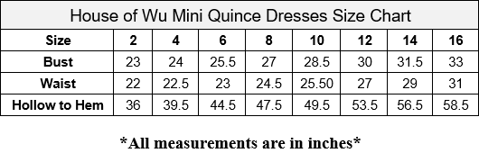Girls Long Floral Applique Dress by Mini Quince 26884MQ-Girls Formal Dresses-ABC Fashion