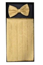 Gold Paisley Cummerbund and Bow Tie Set-Men's Cummerbund-ABC Fashion
