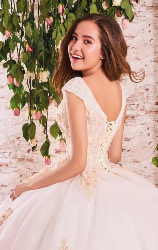 Lace Applique V-Neck Quinceanera Dress by Forever Quince FQ761-Quinceanera Dresses-ABC Fashion