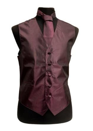 Men's Eggplant Vest with Neck Tie, Bow Tie, Hanky-Men's Vests-ABC Fashion