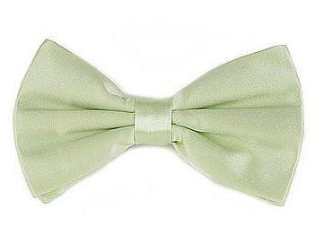 Mint Green Silk Bow Ties-Men's Bow Ties-ABC Fashion